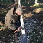 Bushcraft-Training-Courses